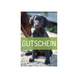 Gutschein Shop of Nature